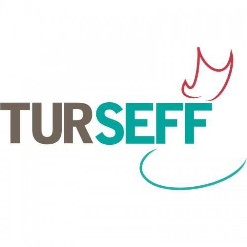 TURSEFF Logo Alternate Version 1