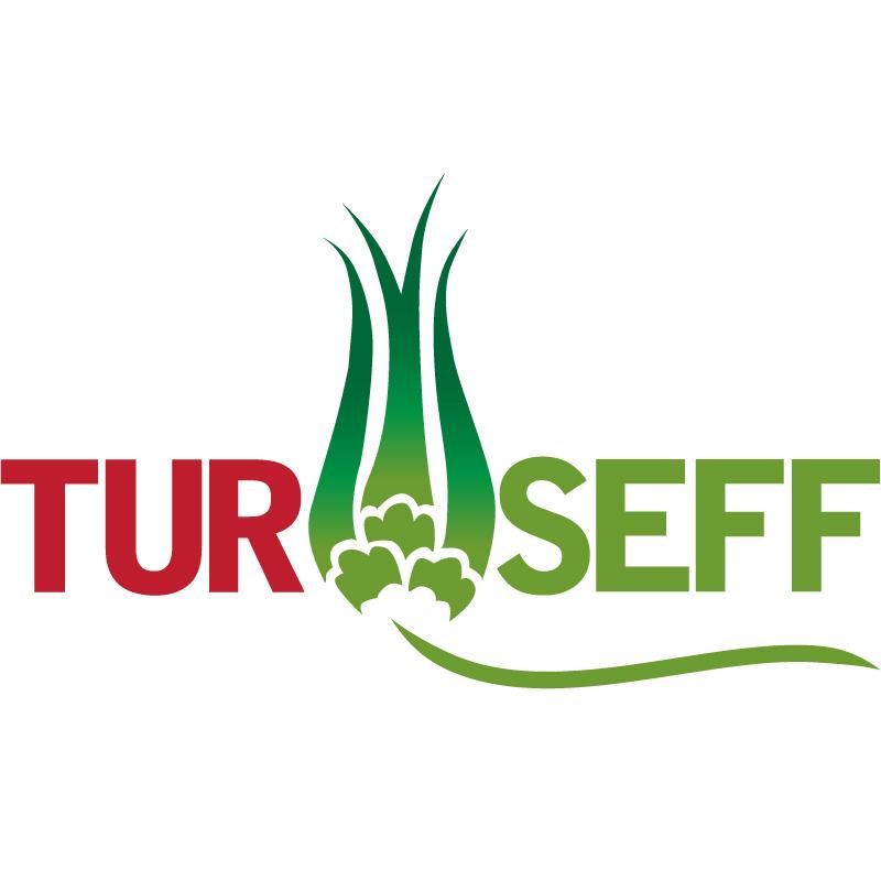 TurSEFF Logo Final